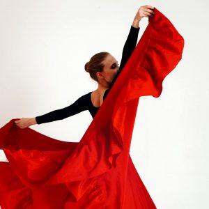 Flamenco Workshop - Training LeukeWorkshop.nl